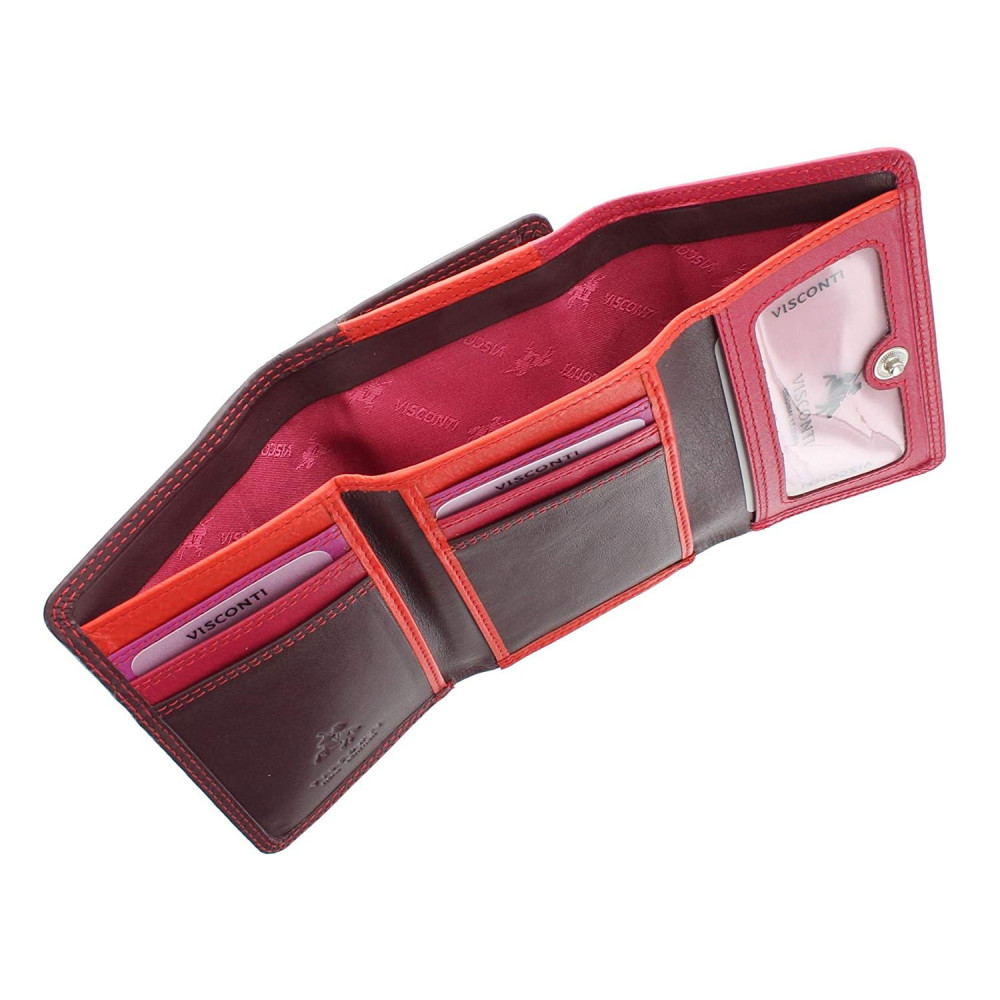 Женский кошелек Visconti RB39 - Biola (Plum Multi)