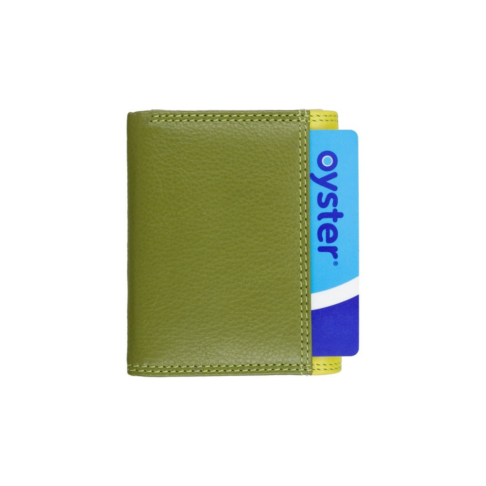 Маленький женский кожаный кошелек с монетницей Visconti RB126 Zanzibar (Lime Multi)